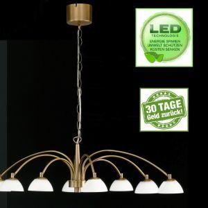 Honsel 11698 LED Pendelleuchte
