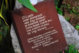 #1 Tablet at Mandai Orchid Garden