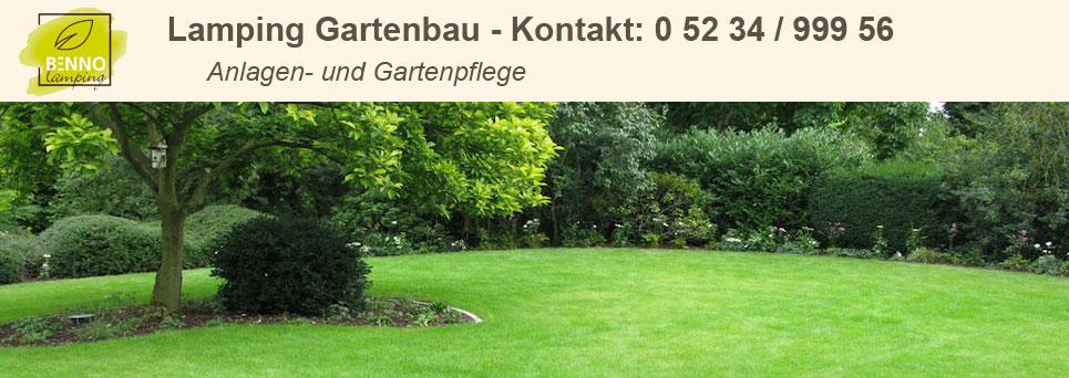 Garten Und Landschaftsbau Paderborn rasenanlage gartenbau 0 52 34 999 56