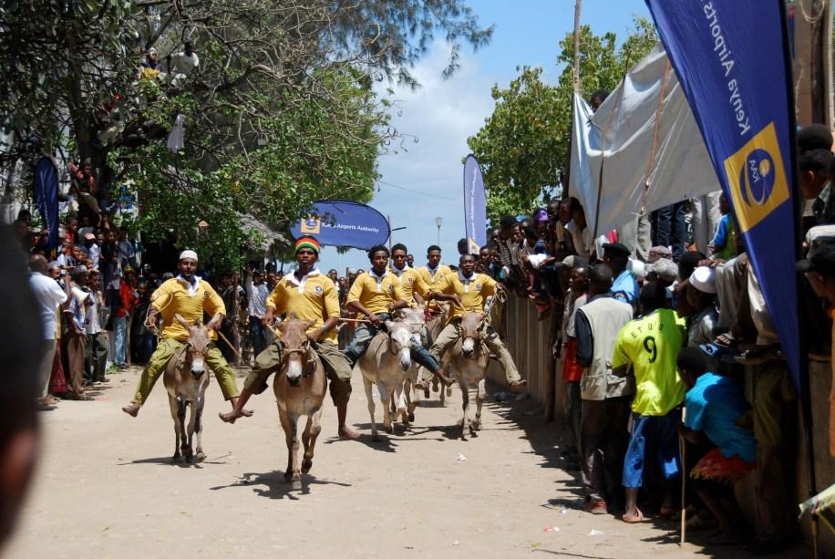 Donkey race start