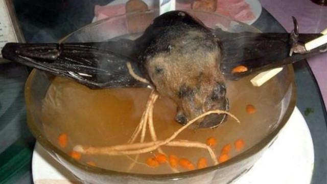 ¿Cómo se prepara la sopa de murciélago a la que relacionan con el brote de coronavirus?