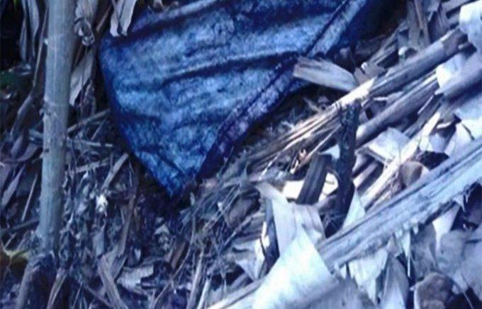 La mutilaron y la metieron en una nevera: El atroz asesinato de una mujer en El Junquito