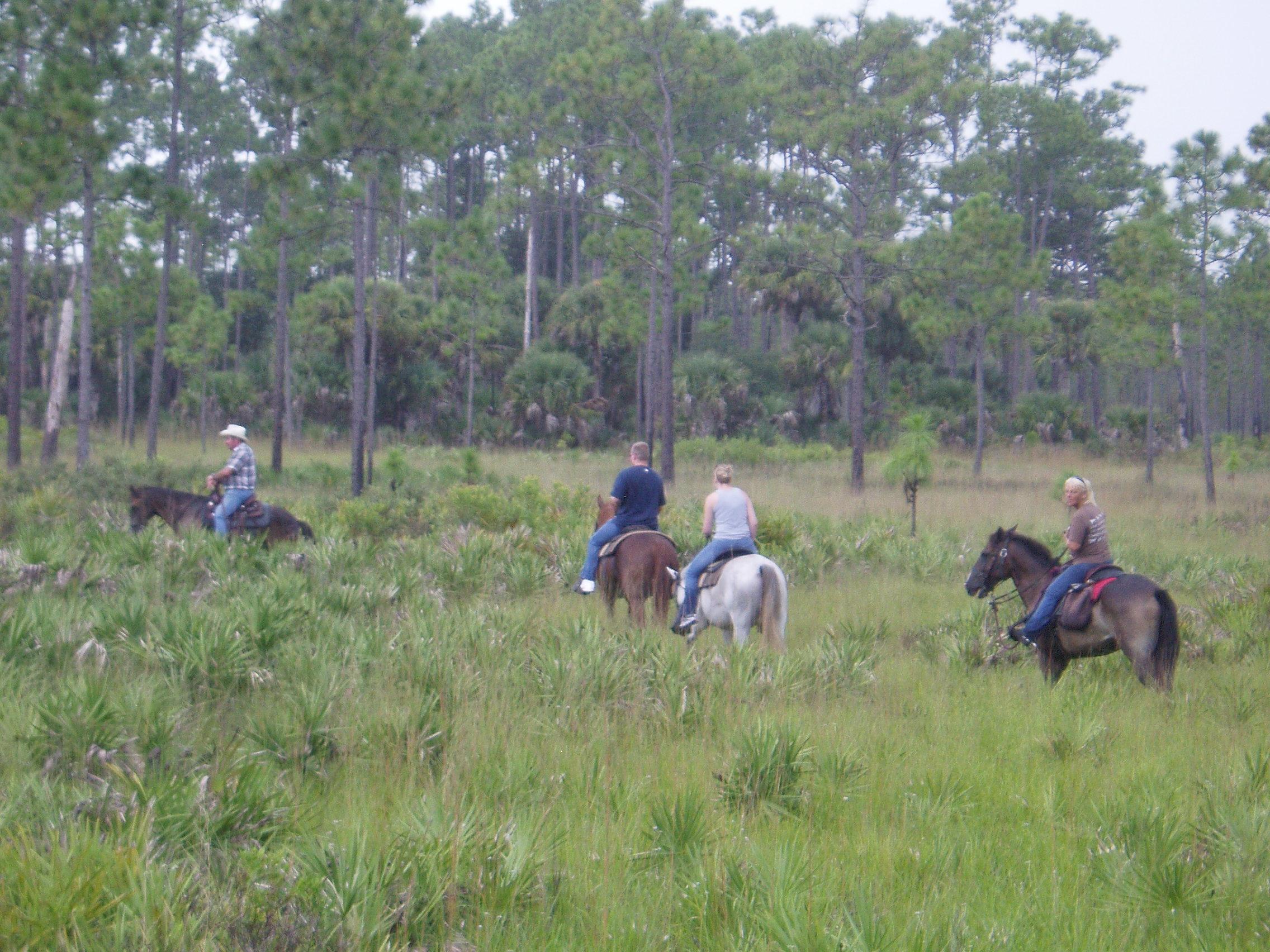 Horseback Safari at Forever Florida