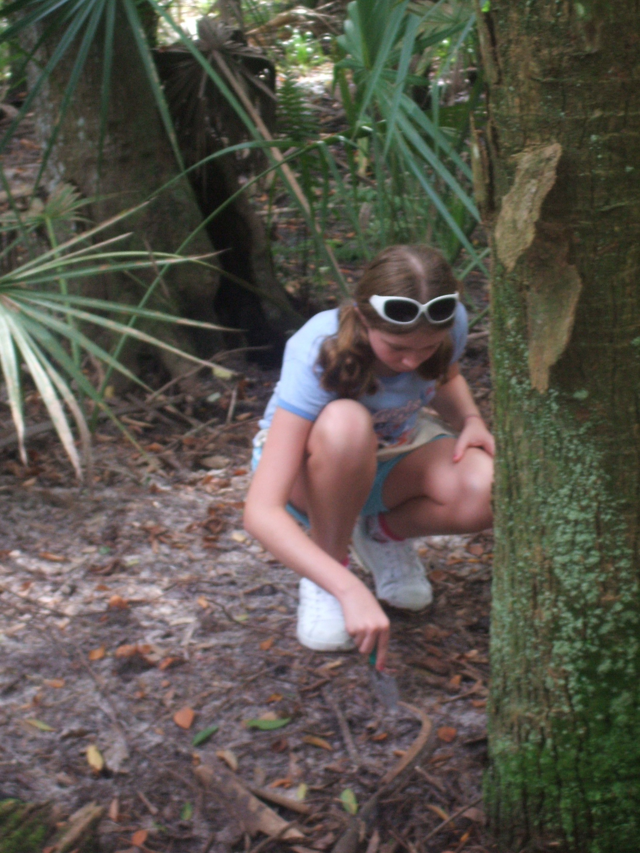 Montessori Student Explores the Florida Landscape