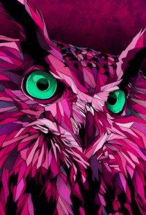 Owl - link to artists page