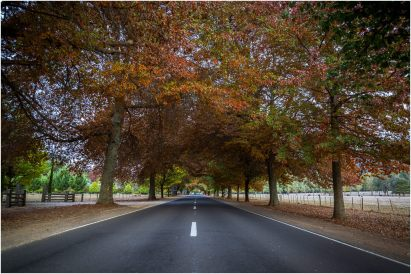 The amazing Autumnal colours at the entrance to Bright, Vic.