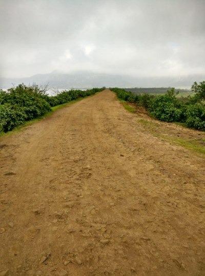The route from Konkan Kada to Harishchandragad Fort Trek