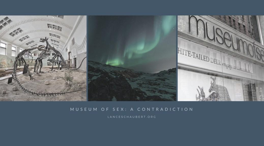 museum of sex a contradiction lance schaubert