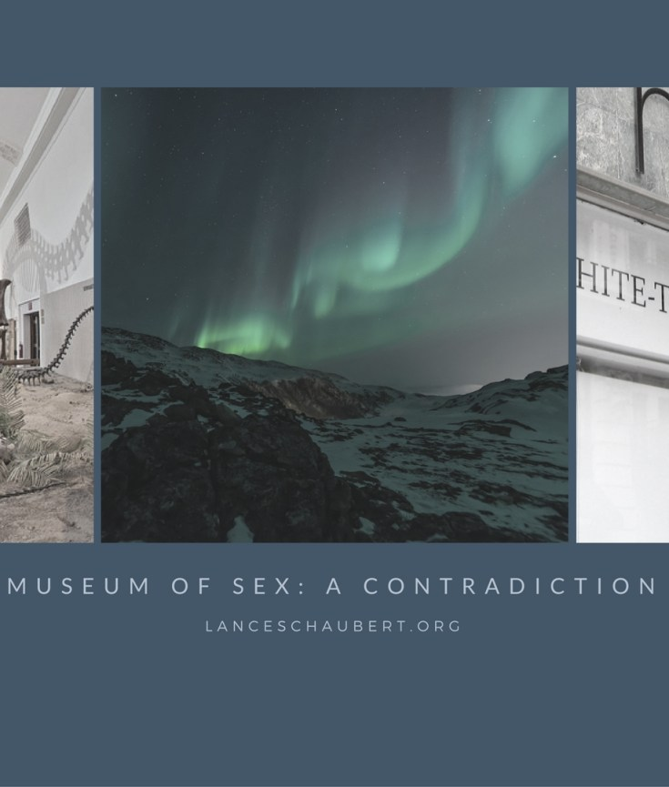 museum of sex a contradiction lance schaubert