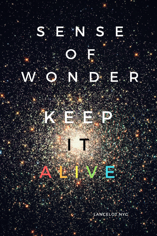 sense of wonder keep it alive art