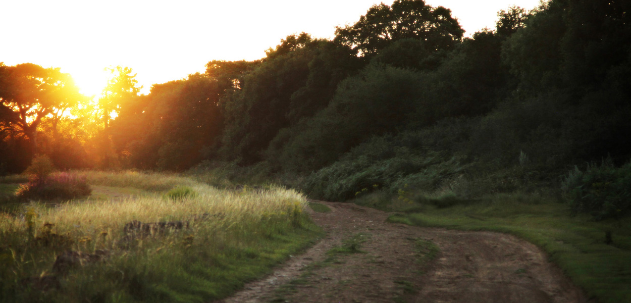 Shotover sunset 1