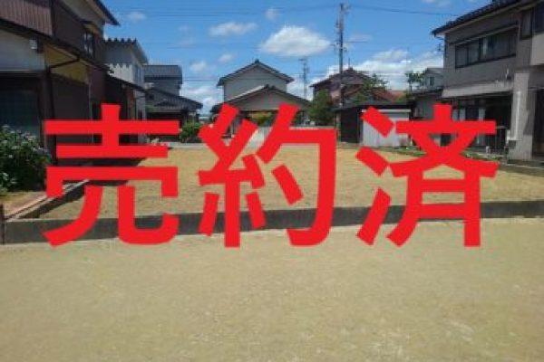 高岡市佐野住宅用土地、昨晩ご契約いただきました。副題:夏休みの襲来