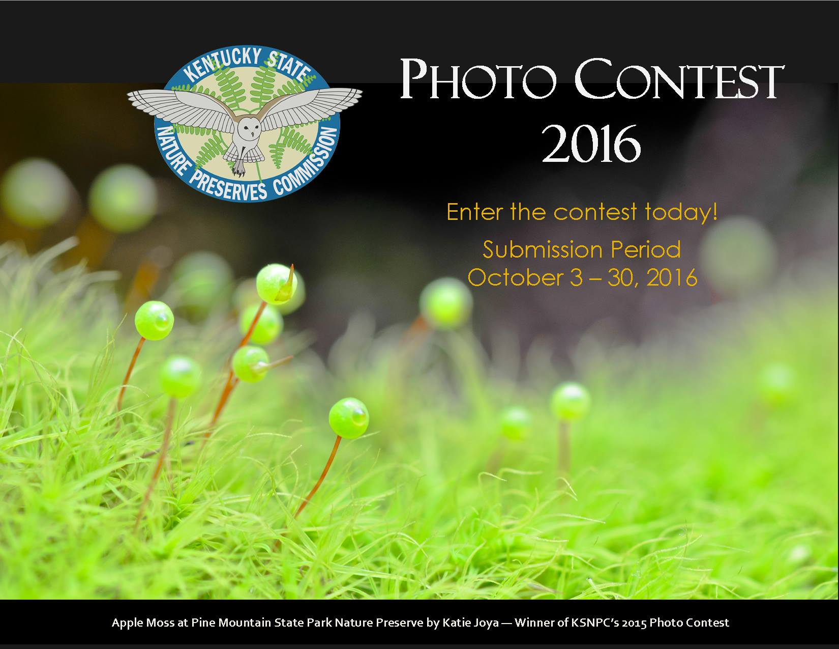 Kentucky State Nature Preserves Commission announces its 2016 photo contest