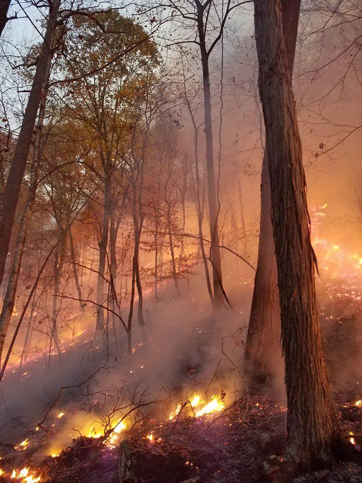 Fighting Kentucky's wildfires: A great coordinated effort