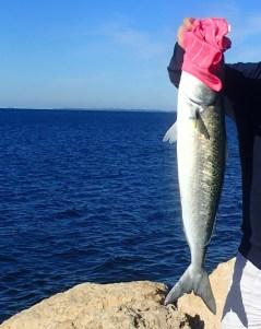 Perth - Indian Ocean fishing