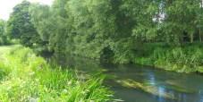 picture-perfect-trout-stream