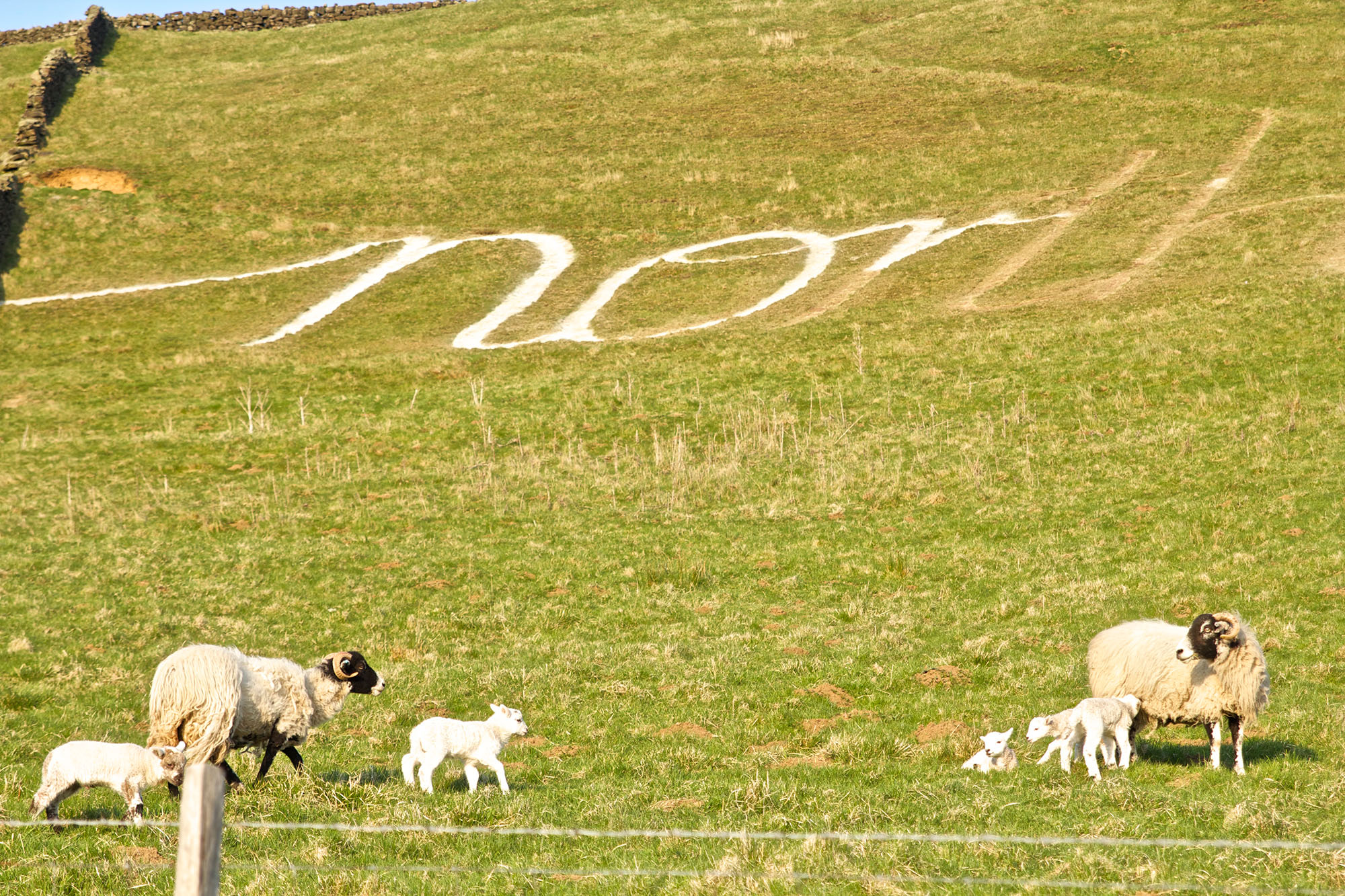 north-york-moors-landart2