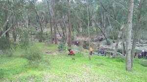 Children planting seedlings at Gooralong Brook, Jarrahdale