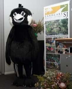 man dressed in black cockatoo costume
