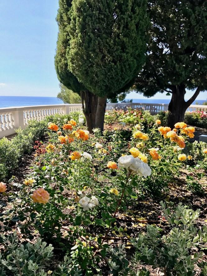 Cap Estel Rose Garden View