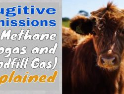 Image shows the YT thumbnail our the video about fugitive methane emissions.
