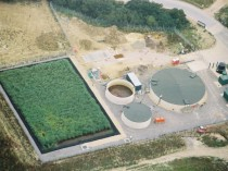 A Leachate Treatment Plant with a Reed Bed which Produces Clean Water from Dirty Water Pumped Out of the Waste