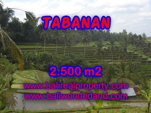 Land for sale in Tabanan, Stunning view in JATILUWIH TABANAN Bali – TJTB076