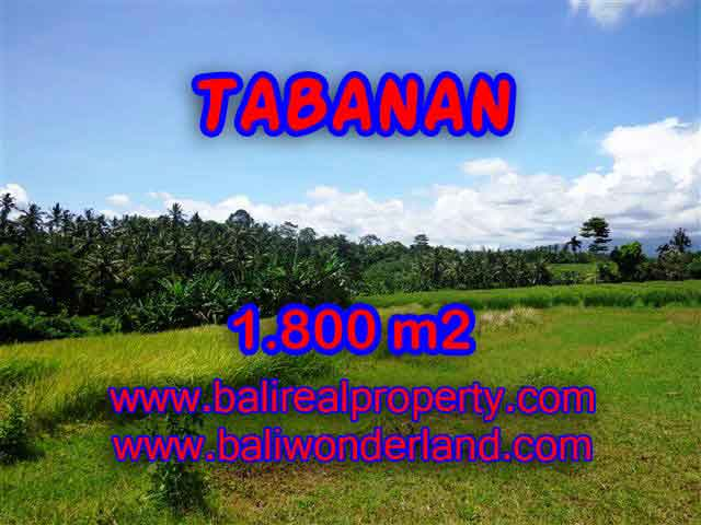 Land in Tabanan Bali for sale, Outstanding view in Tabanan Selemadeg – TJTB106