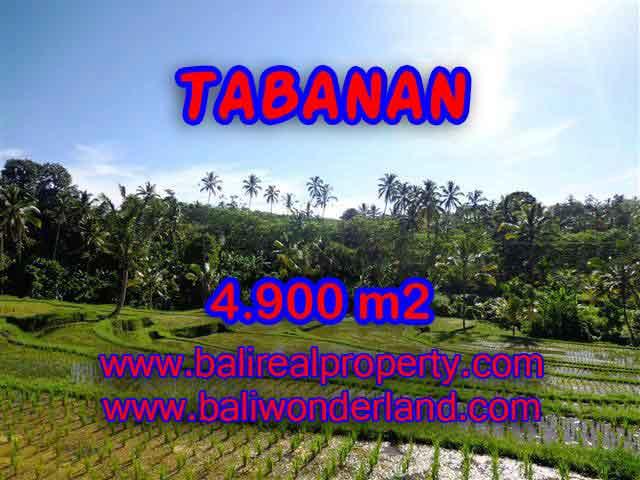 Land in Bali for sale, astounding view in Tabanan Bali – TJTB111