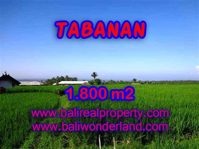 Land for sale in Bali, Fantastic view in Tabanan Penebel – TJTB119