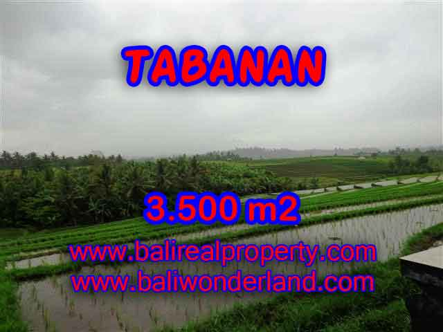 Property in Bali for sale, Fantastic view in Tabanan selemadeg – TJTB141