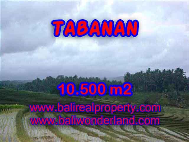 Land for sale in Tabanan, Fantastic view in Tabanan Selemadeg Bali – TJTB095