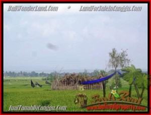 FOR SALE Exotic PROPERTY 1.650 m2 LAND IN CANGGU TJCG158