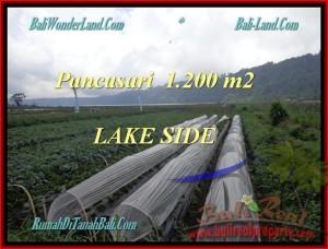 Affordable Tabanan Bedugul BALI LAND FOR SALE TJTB178