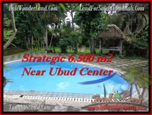 Exotic 6,500 m2 LAND SALE IN UBUD TJUB479