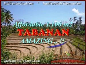 Magnificent TABANAN BALI 1.100 m2 LAND FOR SALE TJTB170