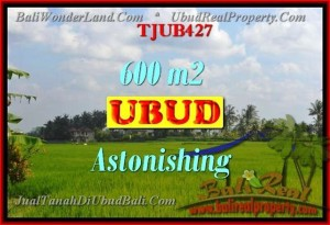 FOR SALE Beautiful PROPERTY 600 m2 LAND IN UBUD BALI TJUB427