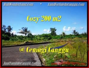 FOR SALE Beautiful PROPERTY LAND IN Canggu Mengening BALI TJCG171