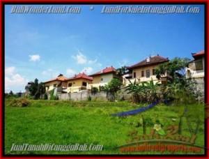 Beautiful 985 m2 LAND SALE IN CANGGU TJCG147