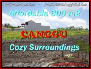 Affordable PROPERTY Canggu Pererenan BALI LAND FOR SALE TJCG157