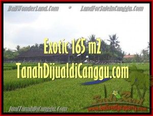 Beautiful PROPERTY CANGGU BALI 1.650 m2 LAND FOR SALE TJCG158