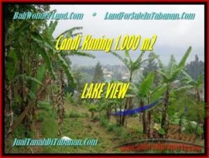 Tabanan Bedugul BALI LAND FOR SALE TJTB181