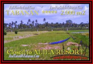 Magnificent TABANAN BALI 2.000 m2 LAND FOR SALE TJTB187