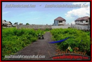 Exotic PROPERTY 335 m2 LAND FOR SALE IN CANGGU BALI TJCG142
