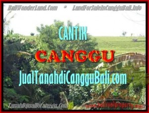 Magnificent PROPERTY 1.700 m2 LAND IN CANGGU BALI FOR SALE TJCG143