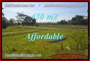 LAND SALE IN Canggu Pererenan TJCG183