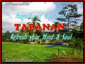 Exotic 4.520 m2 LAND FOR SALE IN TABANAN BALI TJTB154
