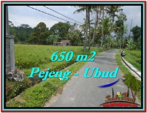 Exotic 650 m2 LAND IN UBUD BALI FOR SALE TJUB522
