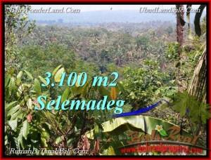 FOR SALE 3,100 m2 LAND IN TABANAN TJTB222
