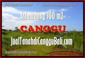 Beautiful Canggu Kayutulang BALI LAND FOR SALE TJCG155